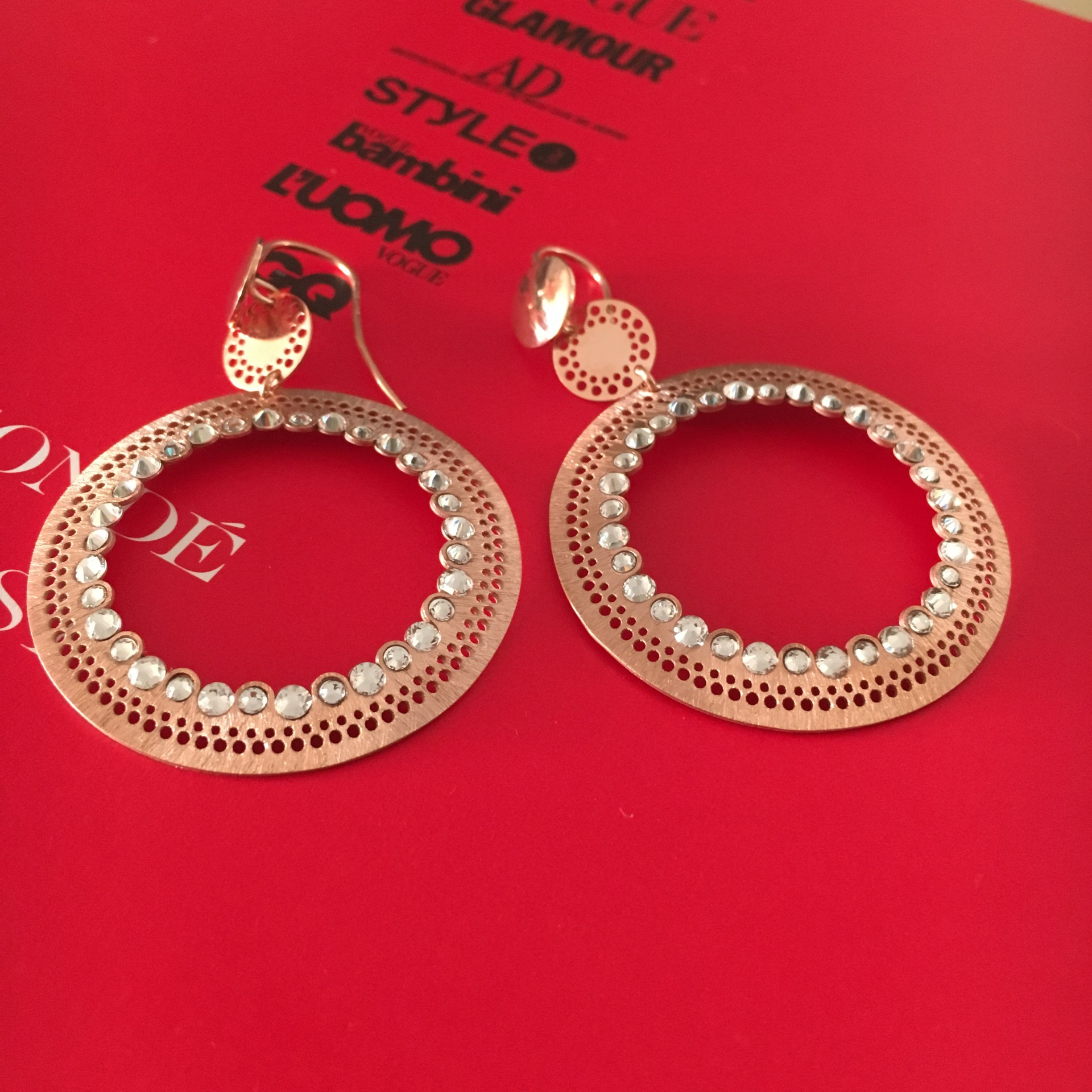The Ethnic in Rose silver earrings