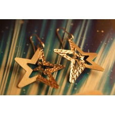 The Star Magic silver earrings