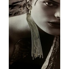 The Stunning silver earrings