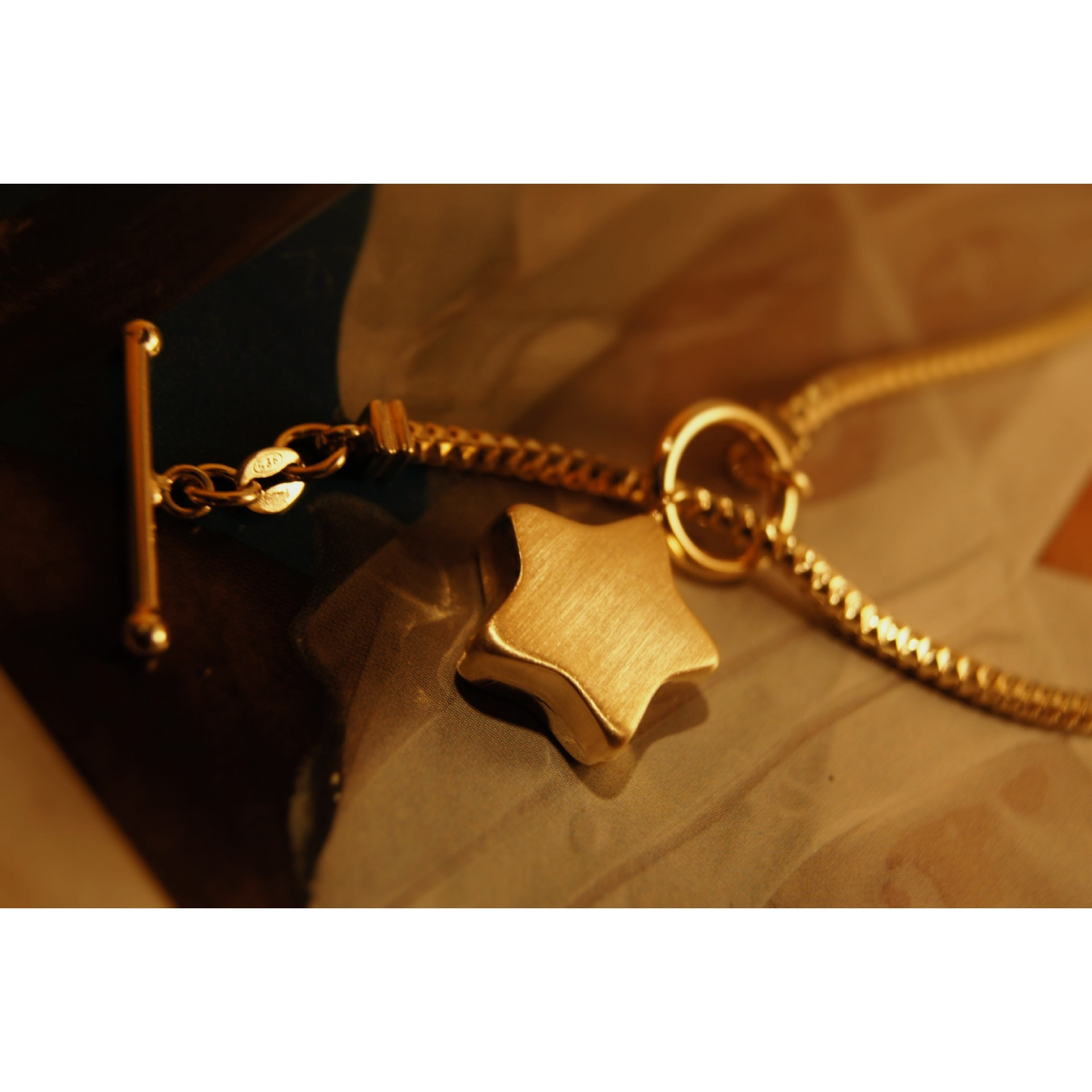 The Star in Gold silver necklace