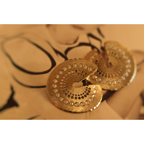 The Discs in Gold silver earrings