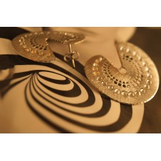 The Discs in Satin silver earrings