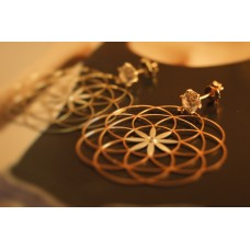The Lotus in Rose Gold silver earrings